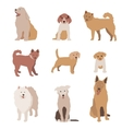 set dog character dogs isolated vector image