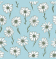 tender blue pattern with white chamomile flowers vector image