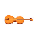 viola musical instrument isolated on white vector image