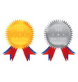 1st success gold silver coin vector image