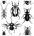 background with high detailed insects sketches vector image