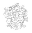 drawing flowers roses vector image vector image