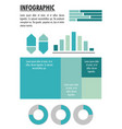 infographic with statistics design vector image vector image