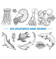 seafood or sea creature nautilus pompilius vector image vector image