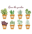 Set of herbs in pots with labels vector image