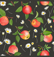 apple pattern with daisy autumn fruits leaves vector image