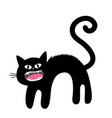 frightened cat arch back screaming kitten hair vector image