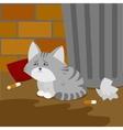 Homeless kitten is suffering on the street vector image vector image