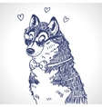 Husky sketch vector image