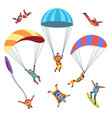 skydivers or parachutists vector image