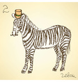 Sketch fancy zebra in vintage style vector image