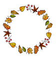 wreath of autumn leaves and fruit beautiful round vector image