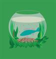 Aquarium vector image