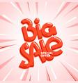 big sale special offer lettering inscription vector image