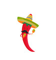 funny chili pepper in a sombrero with maracas vector image vector image