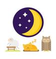 sleep animals icon gift toy vector image vector image