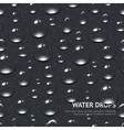 Water Drops Seamless Pattern vector image vector image