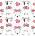 bull terrier seamless pattern background vector image vector image