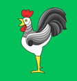 cock colorful bright image green background vector image