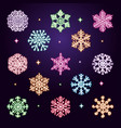 neon snowflakes collection vector image vector image