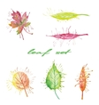 set of different watercolor leaves vector image vector image