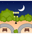 view of a public park at night vector image