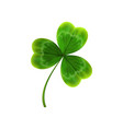 green leave of clover realistic vector image