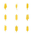 cereal grain icon set flat style vector image vector image
