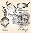 collection of hand drawn vegetables for design vector image