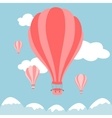 hot air balloons on the sky vector image