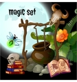 Magic set of wizard vector image vector image