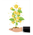 money coin tree in hand of businessman vector image vector image
