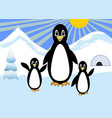 penguins family on a walk in the snowy polar vector image