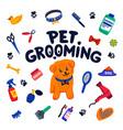 pet grooming concept happy little dog pet vector image