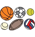 Set of different sport balls vector image vector image