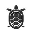 tortoise glyph icon vector image