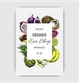 banner fruit for eco shop vector image