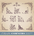 calligraphic corners and decorative elements vector image vector image