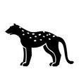 cheetah icon vector image vector image