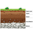 diagram showing different layers soil vector image vector image