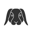 dwarf rabbit glyph icon vector image