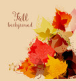 fall leaves background maple leaf in autumnal vector image
