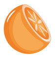 fresh orange half citrus fruit vector image