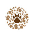 paw print icon design template vector image vector image