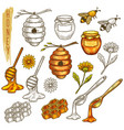 set isolated honey items in line vector image