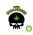 Skull with marijuana cannabis Rasta Halloween vector image