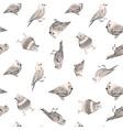 watercolor bird pattern vector image vector image