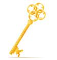 golden vintage key stock vector image