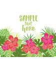 background with tropical flowers vector image vector image
