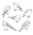 birds outline set vintage collection doodles vector image vector image